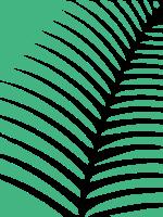 树枝纹理和矩形标志